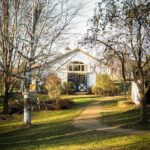 maidenwood-weddings-and-events-White-Barn-View-from-the-Driveway